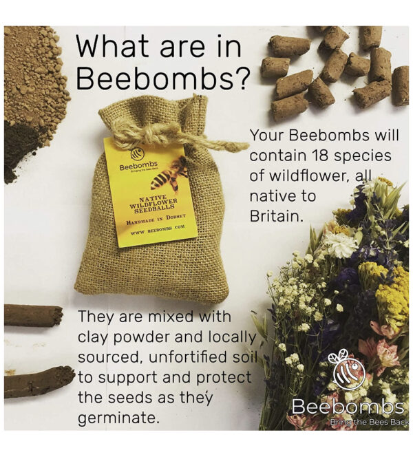 What are Beebombs
